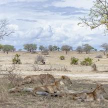 tansania2011-15