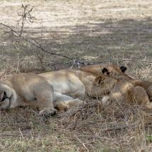 tansania2011-16