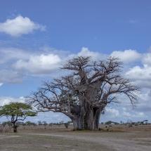 tansania2011-17