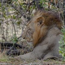 tansania2011-18