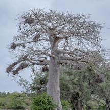 tansania2011-2