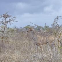 tansania2011-3