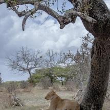 tansania2011-4