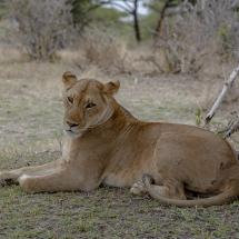 tansania2011-5