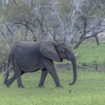 tansania2011-8